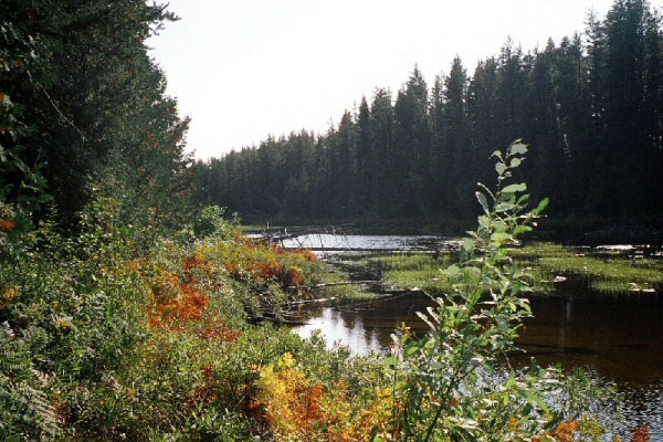 Scenic Wilderness at Argyle Lake Lodge